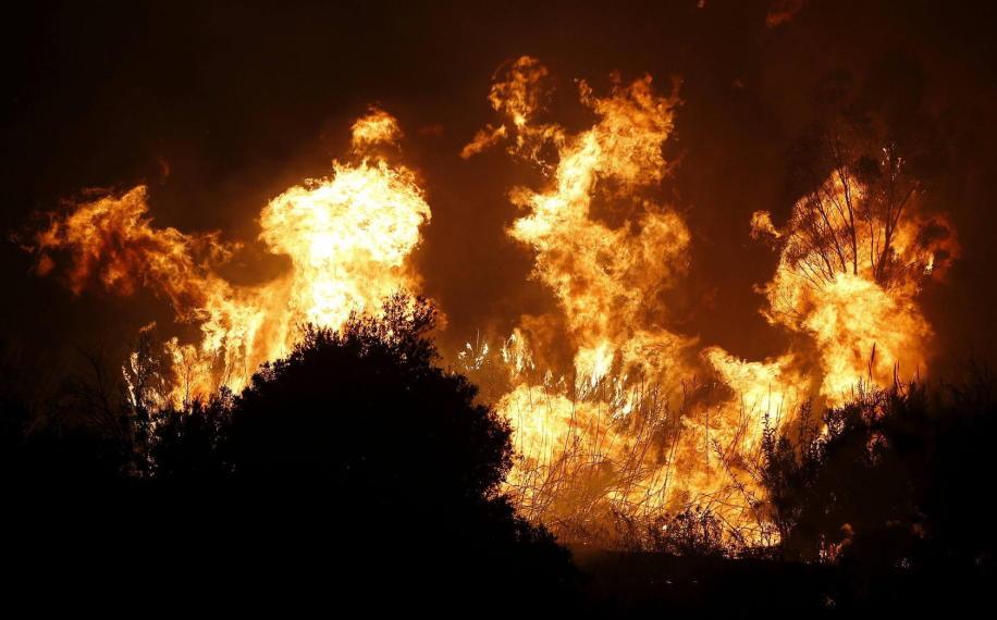 ¿Qué consecuencias jurídicas conlleva un incendio forestal?
